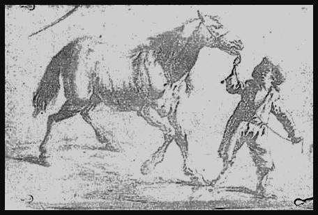 Primer grabado. Niépce (1825) - Heliografía